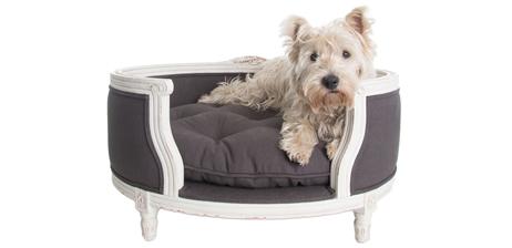 Lord Lou - это голландская компания бескомпромиссно изготавливает мебель для кошек и собак